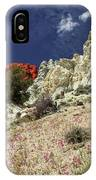 Springtime At Red Rock Canyon IPhone Case