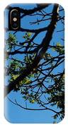 Springtime In The City IPhone Case