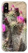 Springtime In The Desert IPhone Case