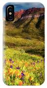 Springtime In The Desert Southwest IPhone Case