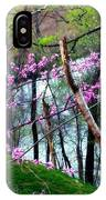 Springtime In The Mountains 2 IPhone Case