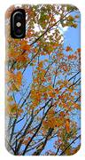 Sprinkles Of Autumn IPhone X Case
