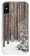 Spruce Among The Pines IPhone Case