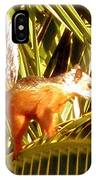 Squirrel In Palm Tree IPhone Case