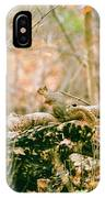 Squirrel In The Woods  IPhone Case