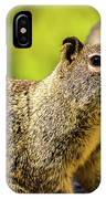 Squirrel On The Rock IPhone Case