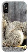 Squirrel - Snack Time IPhone Case