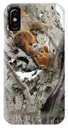 Squirrels At Play IPhone Case