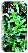 Staghorn Fern With Dead Leaves IPhone Case