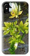 Stalk With Seed Pods IPhone Case