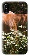 Stalking Big Cat IPhone Case