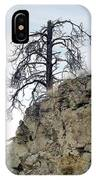 Stalwart Pine Tree IPhone Case