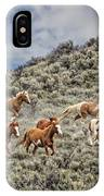 Stampede In The Sage IPhone Case