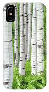 Stand Of Birch IPhone Case