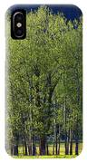 Stand Of Trees Yosemite Valley IPhone Case
