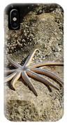 Star Fish On The Rock IPhone Case