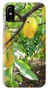 Star Fruit Belongs To The Plant Family IPhone Case