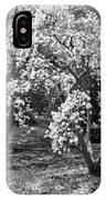 Star Magnolia Trees IPhone Case