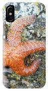 Starfish Running IPhone Case