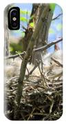 Staring From Its Nest IPhone Case