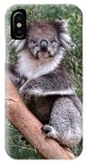 Staring Koala IPhone Case