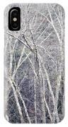 Stark Winter IPhone Case