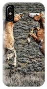 Steens Drama IPhone Case