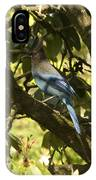 Stellar Jay 2 IPhone Case