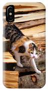 Stepping Down - Calico Cat On Beech Woodpile IPhone X Case