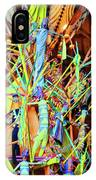 Stick Of Color IPhone Case