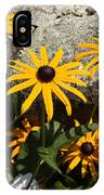 Stone Flowers Black Eyed Susan IPhone Case