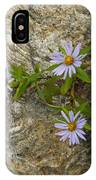 Stone Flowers Blue IPhone X Case