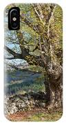 Stone Wall Spring Landscape IPhone Case
