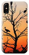 Storks In The Evening Sun Light IPhone Case