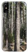 Storm Point Trail Forest IPhone Case