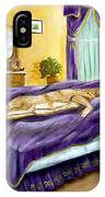 Strange Bedfellows IPhone Case
