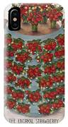 Strawberries, 1889 IPhone Case