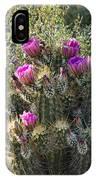 Strawberry Hedgehog Cactus  IPhone Case
