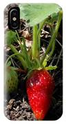 Strawberry Plant IPhone Case