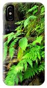 Stream El Yunque National Forest IPhone Case