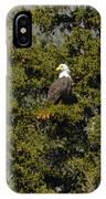 Streamside Eagle IPhone Case