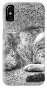 Street Bandit IPhone Case