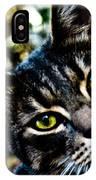 Street Cat II IPhone Case