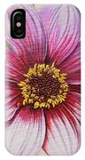 Stripes-dahlia I IPhone Case