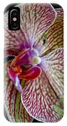 Study Of An Orchid 2 IPhone Case