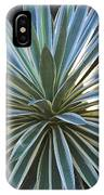 Stunning Agave Plant IPhone Case