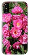 Stunning Pink Roses IPhone Case