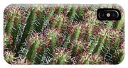 Succulent Series Vi IPhone X Case