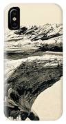 Suddenly A Lone Beach Camel Appeared IPhone Case