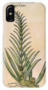 Sugar Cane, 1597 IPhone Case